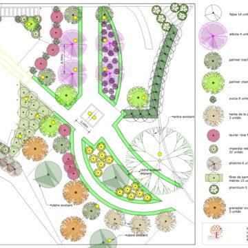 plan plantation